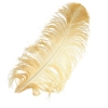 "Ostrich Wing Feathers 18-24"" Premium Quality 1/2 Lb Copper"